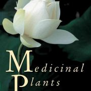 medicinal-plants-world