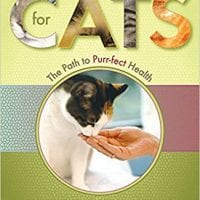 nutrition-cats-lifestyle